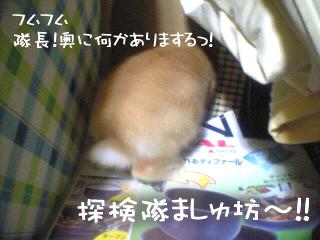 VFSH0089.JPG