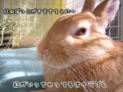 mashu0122_2.jpg
