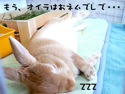 mashu0425_2.jpg