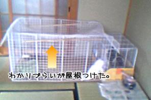 mashu0511_3.jpg