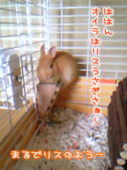 mashu0512_1.jpg
