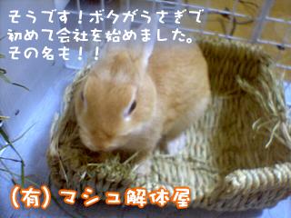 mashu0920_2.jpg