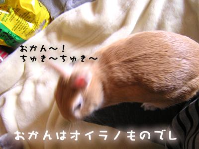 mashu1019_3.jpg
