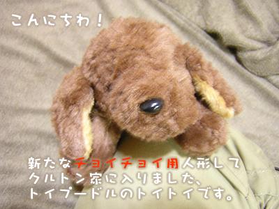 mashu_0905_1.jpg
